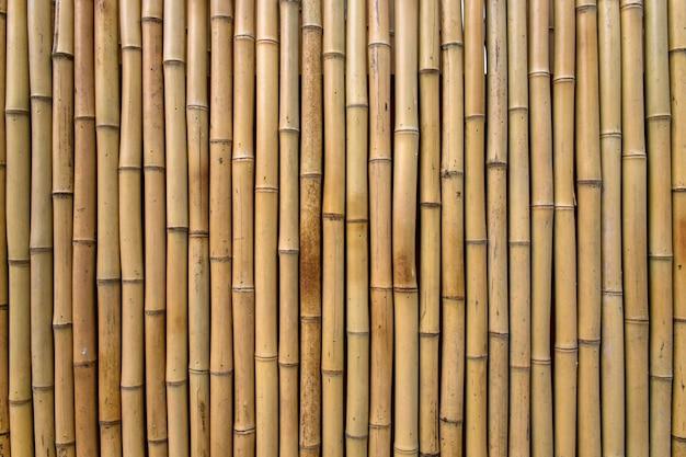 竹のテクスチャ1 無料写真