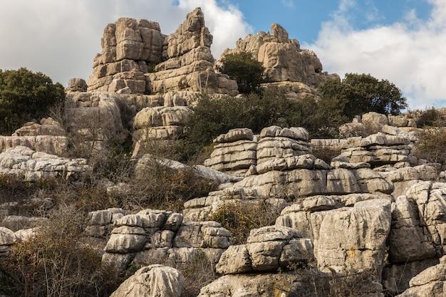 トルカルデアンテケラナチュラルパークには、ヨーロッパで最も印象的なカルスト風景の1つがあります。 Premium写真