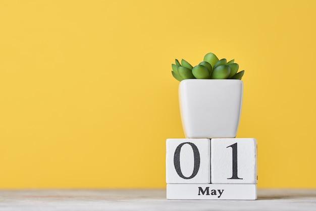 Деревянный блок-календарь с датой 1 мая и сочные растения в горшке. концепция дня труда Premium Фотографии