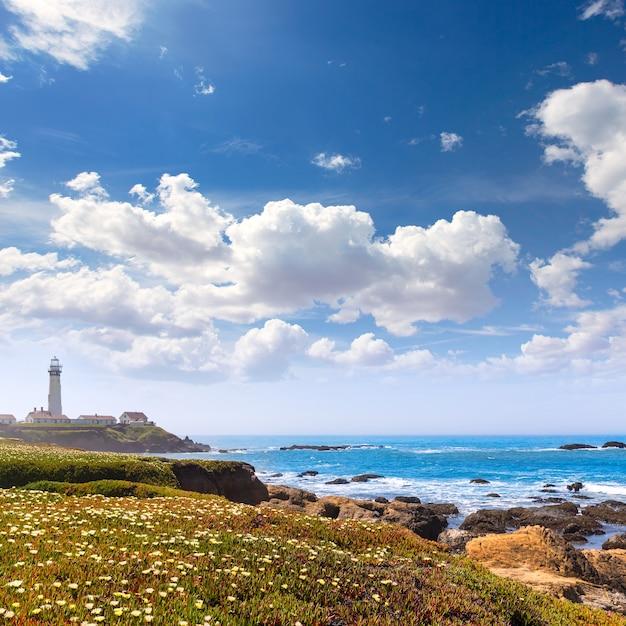 カブリヨハイウェイ沿岸ハイウェイのカリフォルニアピジョンポイント灯台1 Premium写真