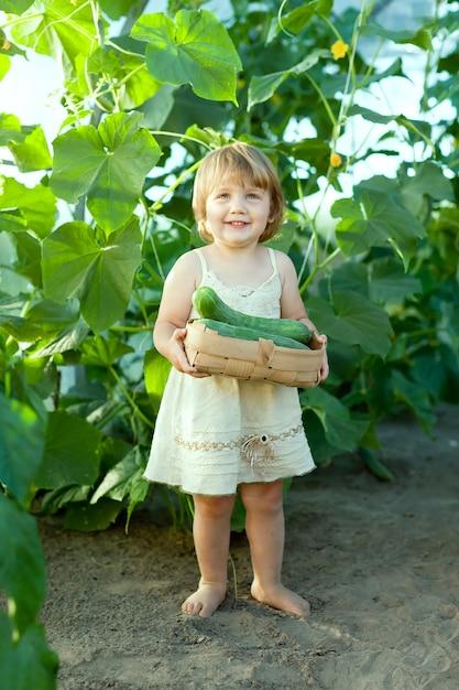 2 years child picking cucumbers Free Photo
