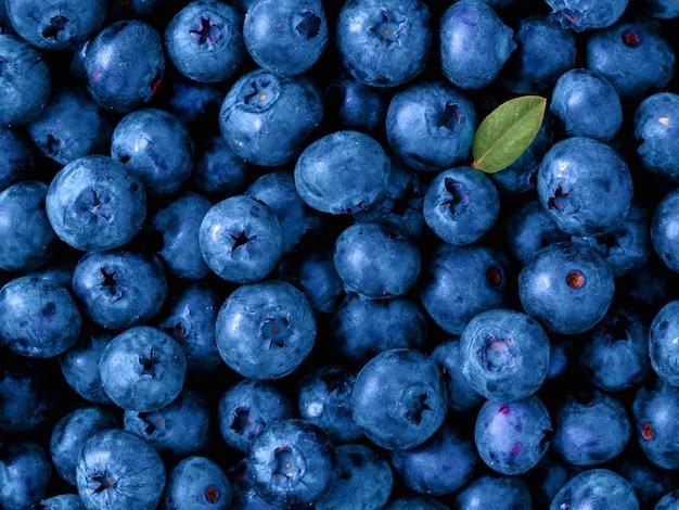 2020年のクラシックブルーの色の美しいブルーベリー。 Premium写真