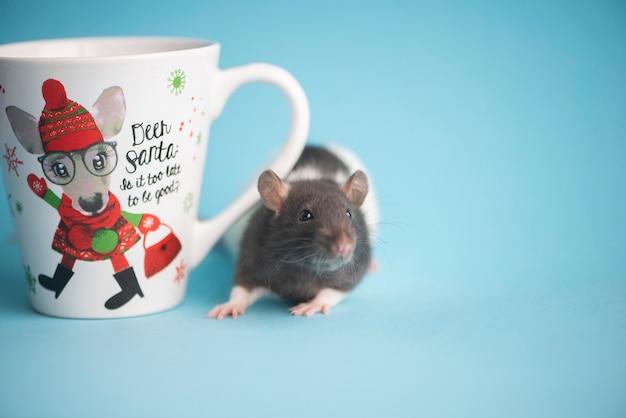 Милая отечественная крыса и белая чашка чая изолированные на сини. концепция нового года 2020. Premium Фотографии