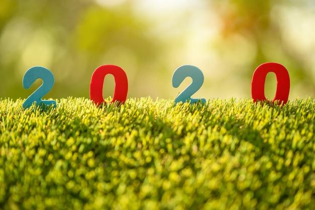 Цвет номер 2020 на вершине зеленой травы в саду размытие фона Premium Фотографии