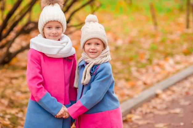暖かい晴れた秋の日に公園で2人の愛らしい女の子 Premium写真