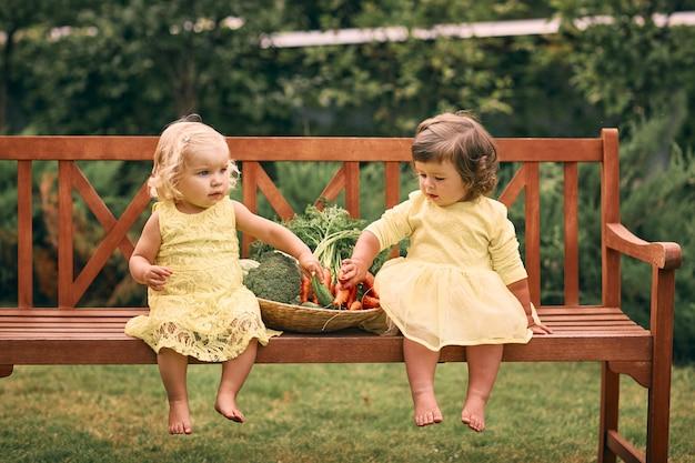 緑の庭で裸足の黄色のドレスを着た2人の少女が、きゅうり、にんじん、ブロッコリーの入った大きな野菜のバスケットの隣のベンチに座っています。健康食品、グリーンベジタリアン料理。 Premium写真