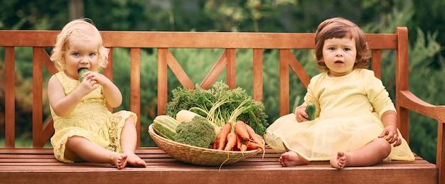 緑の庭で裸足の黄色のドレスを着た2人の少女が、きゅうり、にんじん、ブロッコリーの入った大きな野菜のバスケットの隣のベンチに座っています。 Premium写真