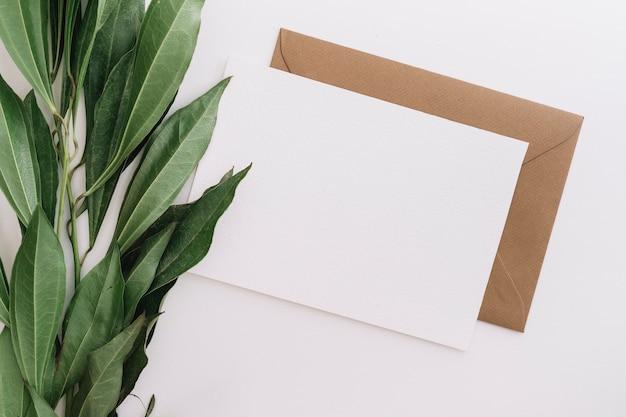白い背景に2つの封筒を持つ緑の葉の高台 無料写真