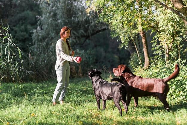 女性と彼女の2つのラブラドールズは公園で草の中のボールで遊ぶ 無料写真