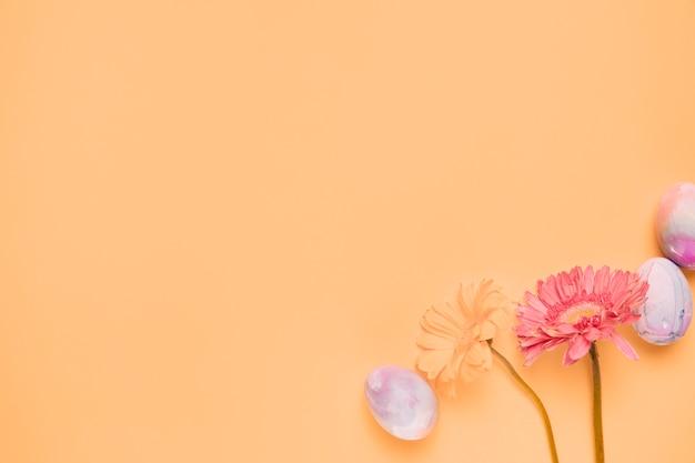 黄色の背景の隅にイースターエッグと2つのガーベラの花 無料写真