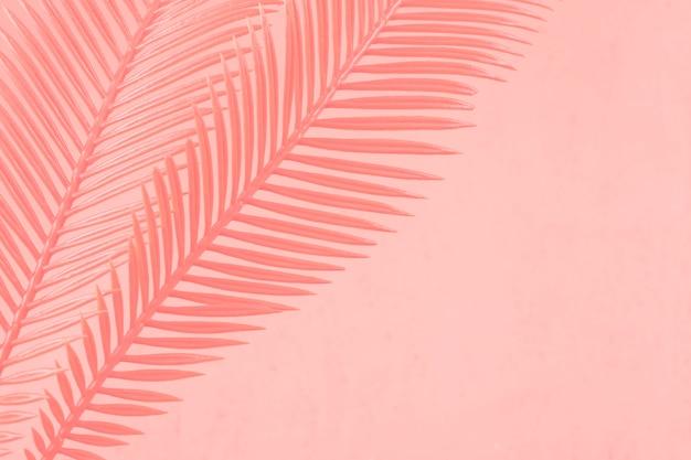 サンゴを背景に描かれた2つのヤシの葉 無料写真