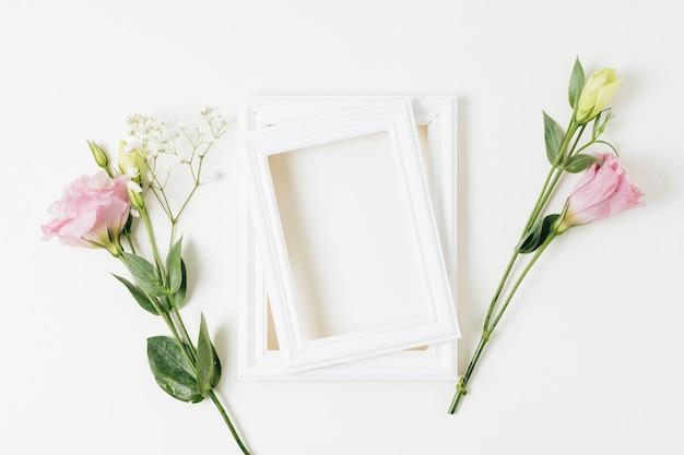 ピンクのトルコギキョウと白い背景の上の赤ちゃんの息の花を持つ2つの塗装フレーム 無料写真