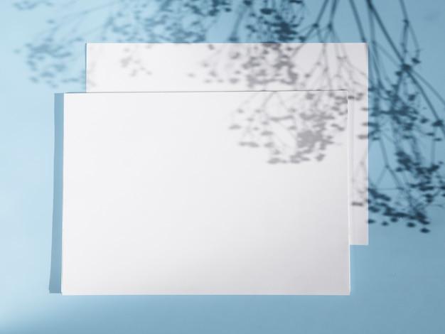 2つの白い空白と枝の影と明るい青の背景 無料写真