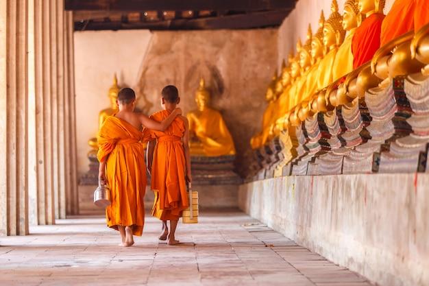 リターンを歩くと日没時、タイのアユタヤ県で古い寺院で話している2人の初心者 Premium写真