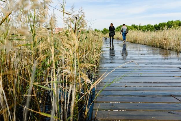 2人の女性が湖の木の歩道橋で犬を散歩させます。 Premium写真