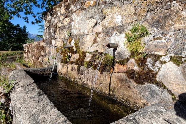 澄んだ水と2本の管の源 Premium写真