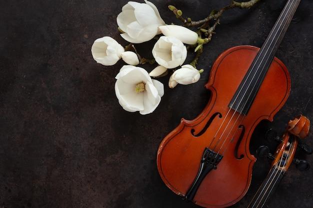 2つの古いバイオリンと開花するモクレンの枝。トップビュー、ダークビンテージのクローズアップ Premium写真