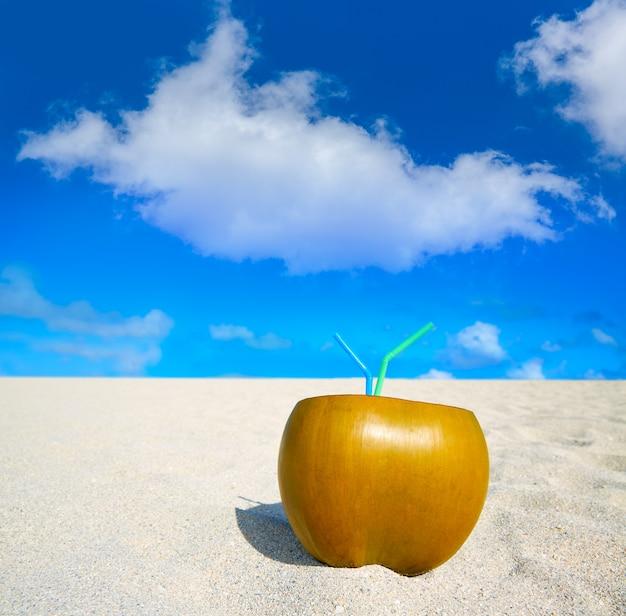 Майами саус бич 2 соломинки кокосовые флорида Premium Фотографии