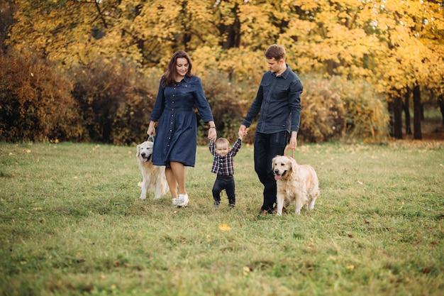 秋の公園で子供と2つのゴールデンレトリーバーと家族 Premium写真