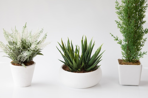 3 in 1 of fake flower in white flower pot and on white background. Premium Photo