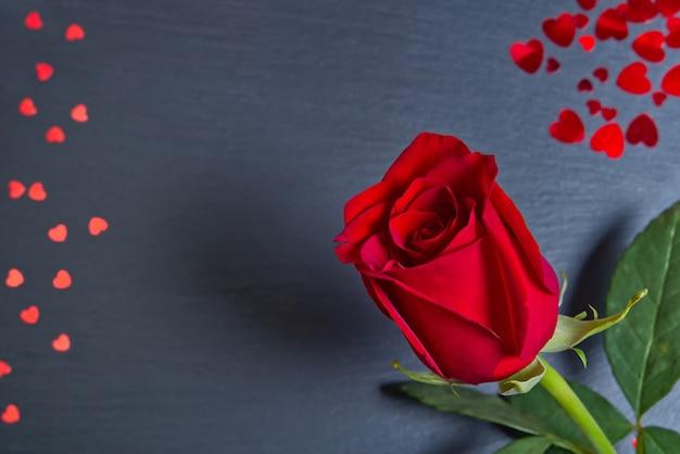 心で暗い灰色の背景に美しいシングルローズ。聖バレンタインの概念、母の日、3月8日。 Premium写真