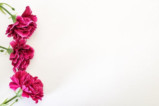 3月8日女性の日カーネーション Premium写真