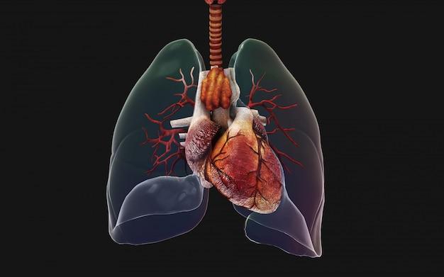 3 dイラストレーション人間の肺と呼吸器系。中国イラストコンセプトのncov。 Premium写真