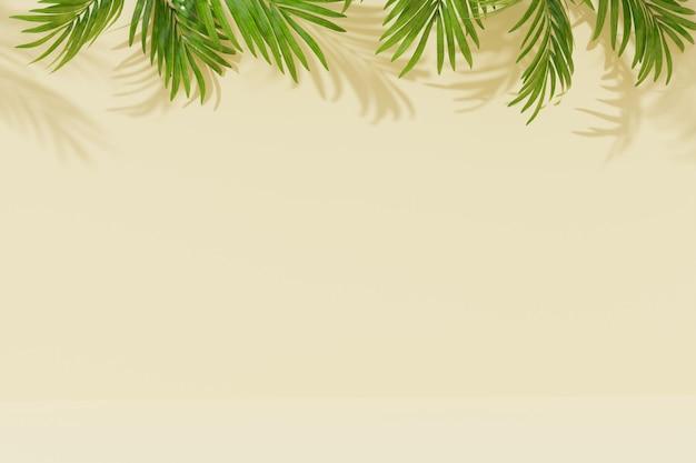 ヤシの葉と壁の影と空の部屋の背景。 3 dのレンダリング。 Premium写真