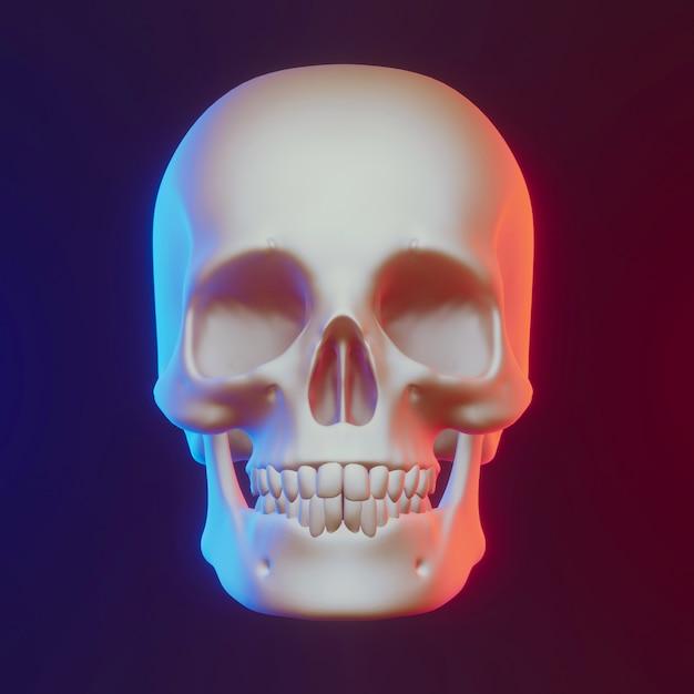 素敵な照明、3 dレンダリングと頭蓋骨 Premium写真