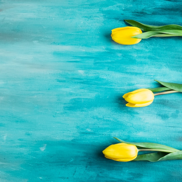 テーブルの上の3つのチューリップの花 無料写真