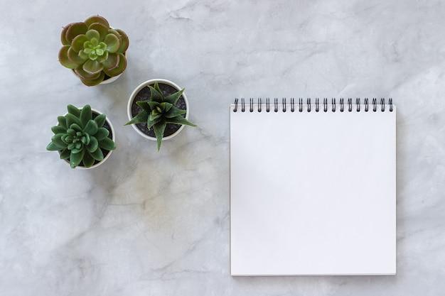 3つの多肉植物と白い大理石の空白のノートブックを開く Premium写真