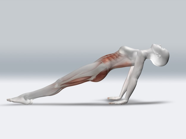 3D Female Figure in Sprinting Pose with Muscles Used