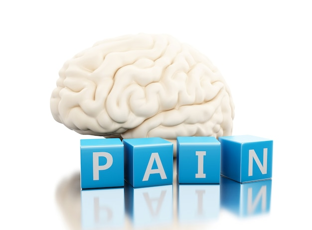 3d human brain with pain word in cubes Premium Photo