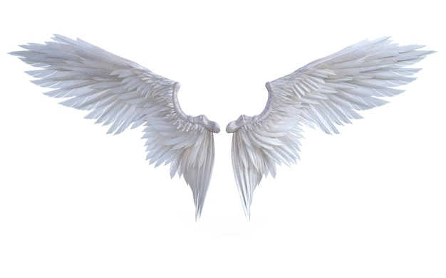 3d illustration angel wings, white wing plumage isolate on white background Premium Photo