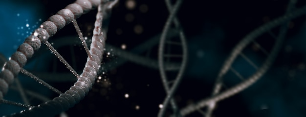 3d illustration. dna molecule spiral structures dark background Premium Photo
