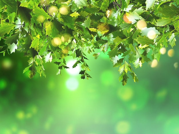 3d leaves on a defocussed background Photo | Free Download