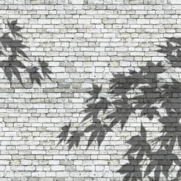 3d leaves shadows on a brick wall texture Free Photo