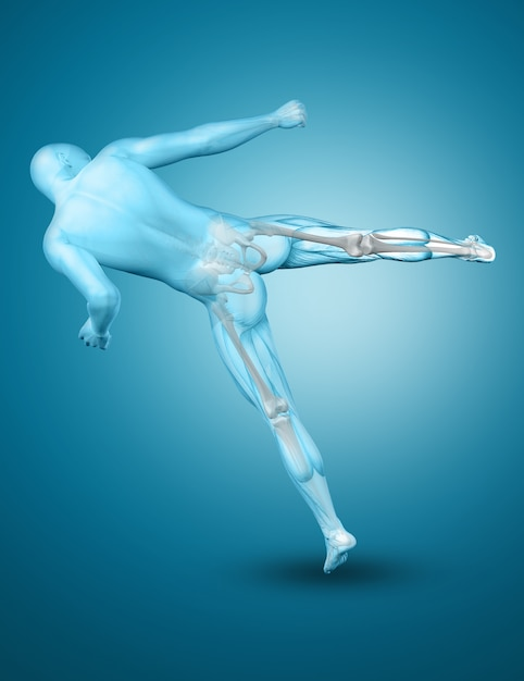 3d male medical figure in a kick boxing pose Free Photo