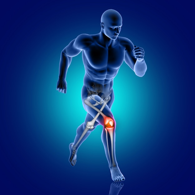3d male medical figure running with knee bone highlighted Free Photo
