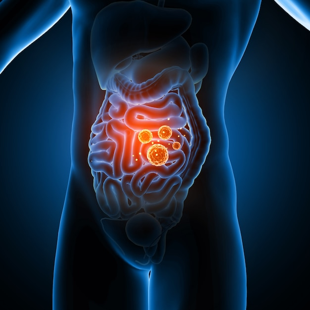 3d male medical figure showing virus cells in the guts Premium Photo