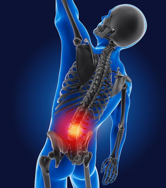 3d medical man with skeleton Premium Photo