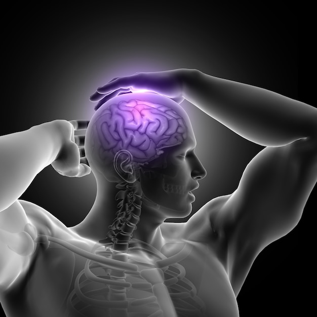 3d render of a male figure holding head with brain highlighted Free Photo