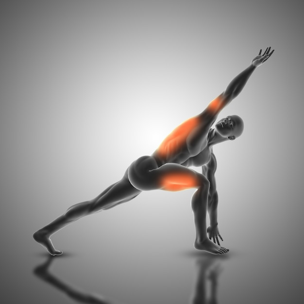 3d female medical figure with muscle map in yoga pose