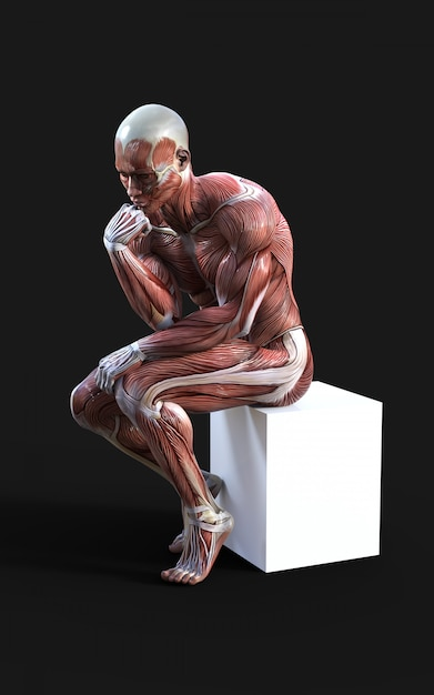 3d render of male figures pose with muscle Premium Photo