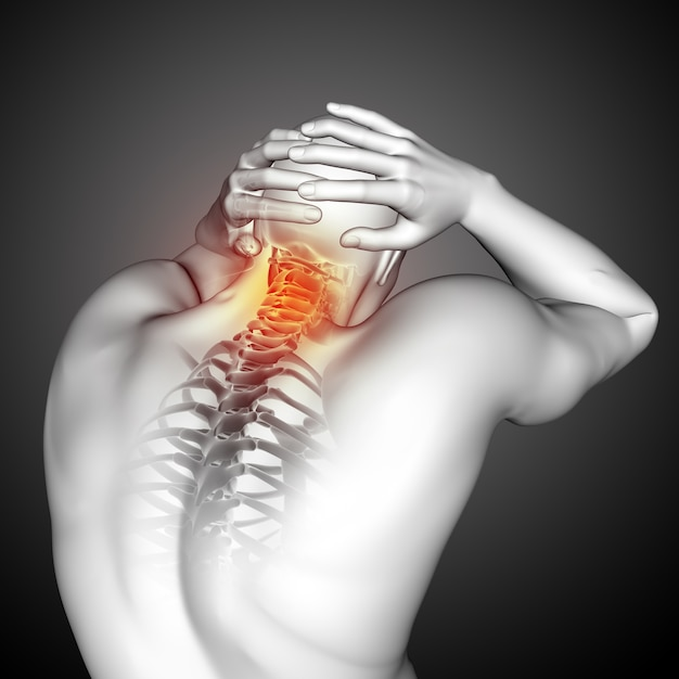 3d render of a male medical figure with top of spine highlighted Free Photo