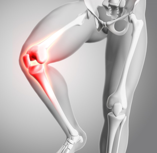 3d render of a medical figure with close up of knee and glowing bones Free Photo