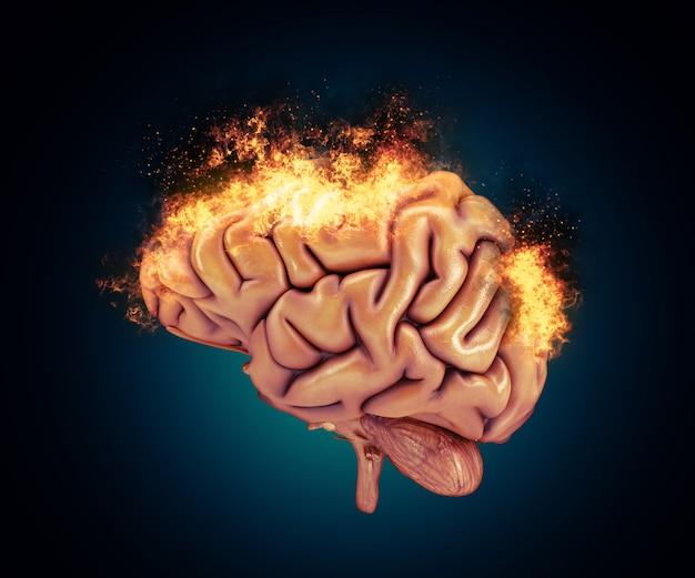 화 염과 뇌의 3d 렌더링 무료 사진