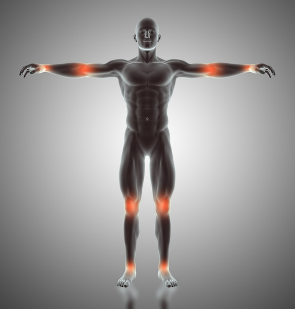 3d render of a male figure with joints highlighted Free Photo