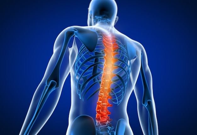 3d rendered illustration of a man having a painful back Premium Photo