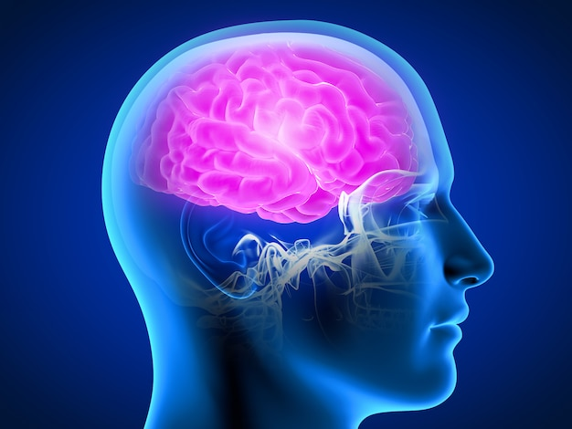3d rendered illustration of a man having a painful brain Premium Photo